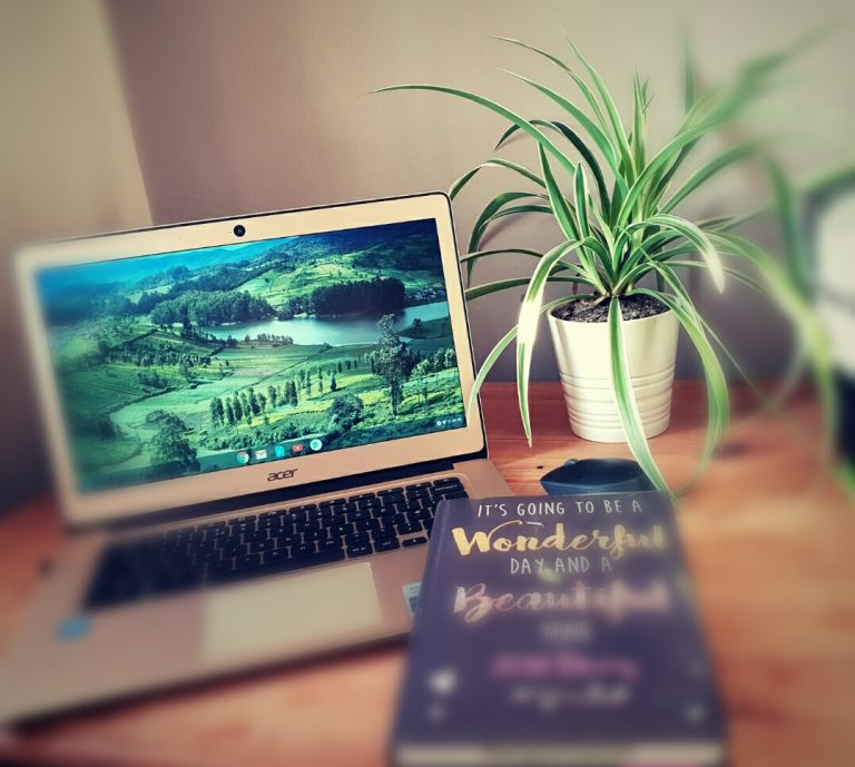 Gold Chrome book, plant and diary on desk